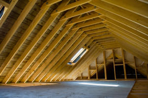Cutaway view of attic in Washington